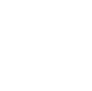 Provider Smemo Sounds logo