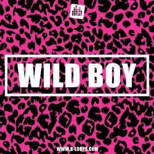 Sample pack Wild Boy