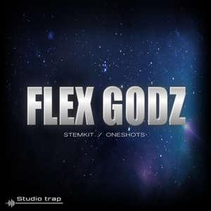 Sample pack Flex Godz (StemKit / One Shots)