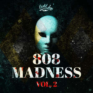 Sample pack 808 Madness Vol.2