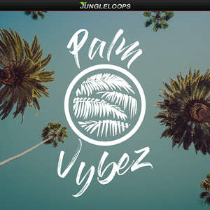 Sample pack Palm Vybez