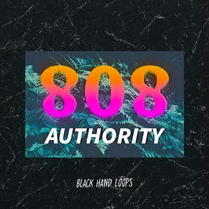 Sample pack 808 Authority