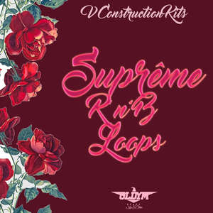Sample pack Supreme RnB Loops