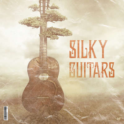 Sample pack Silky Guitars