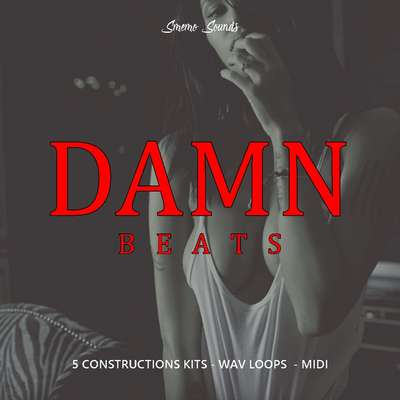 Sample pack DAMN BEATS