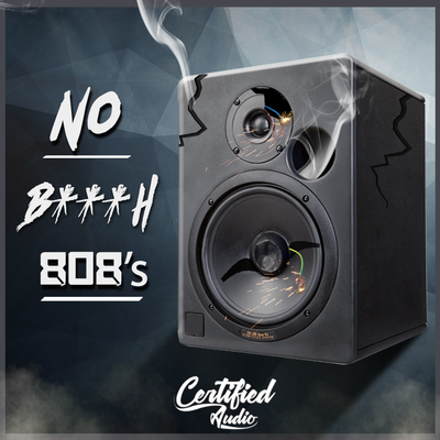 Sample pack No B***H 808's
