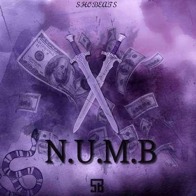 Sample pack X NUMB
