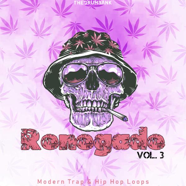 Sample pack Renegade Vol. 3
