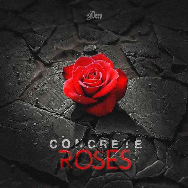 Sample pack Concrete Roses